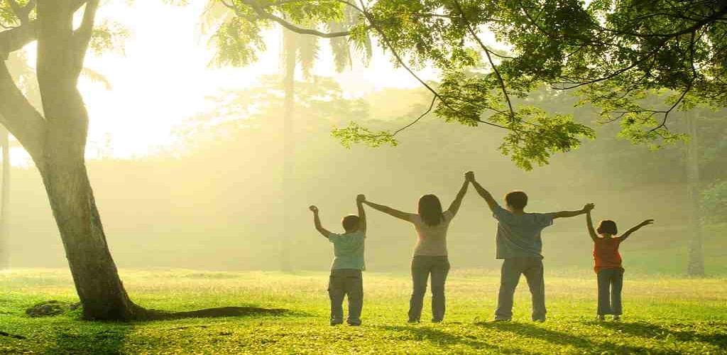 12 indikator keluarga sehat