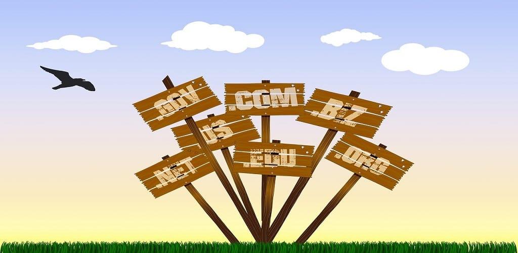 fungsi domain dan hosting