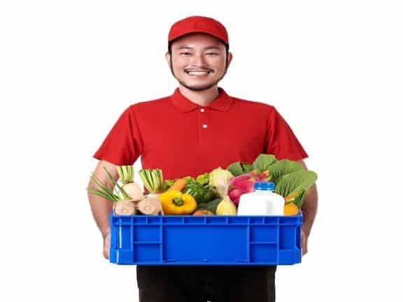 situs belanja online buah dan sayur
