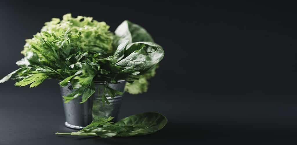 pewarna alami makanan dari tumbuhan